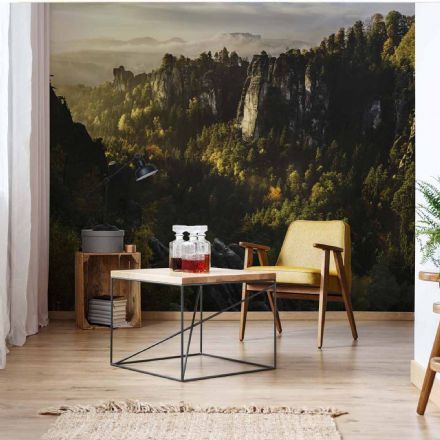 "Non-woven Photo wallpaper ""Forest Valley"""